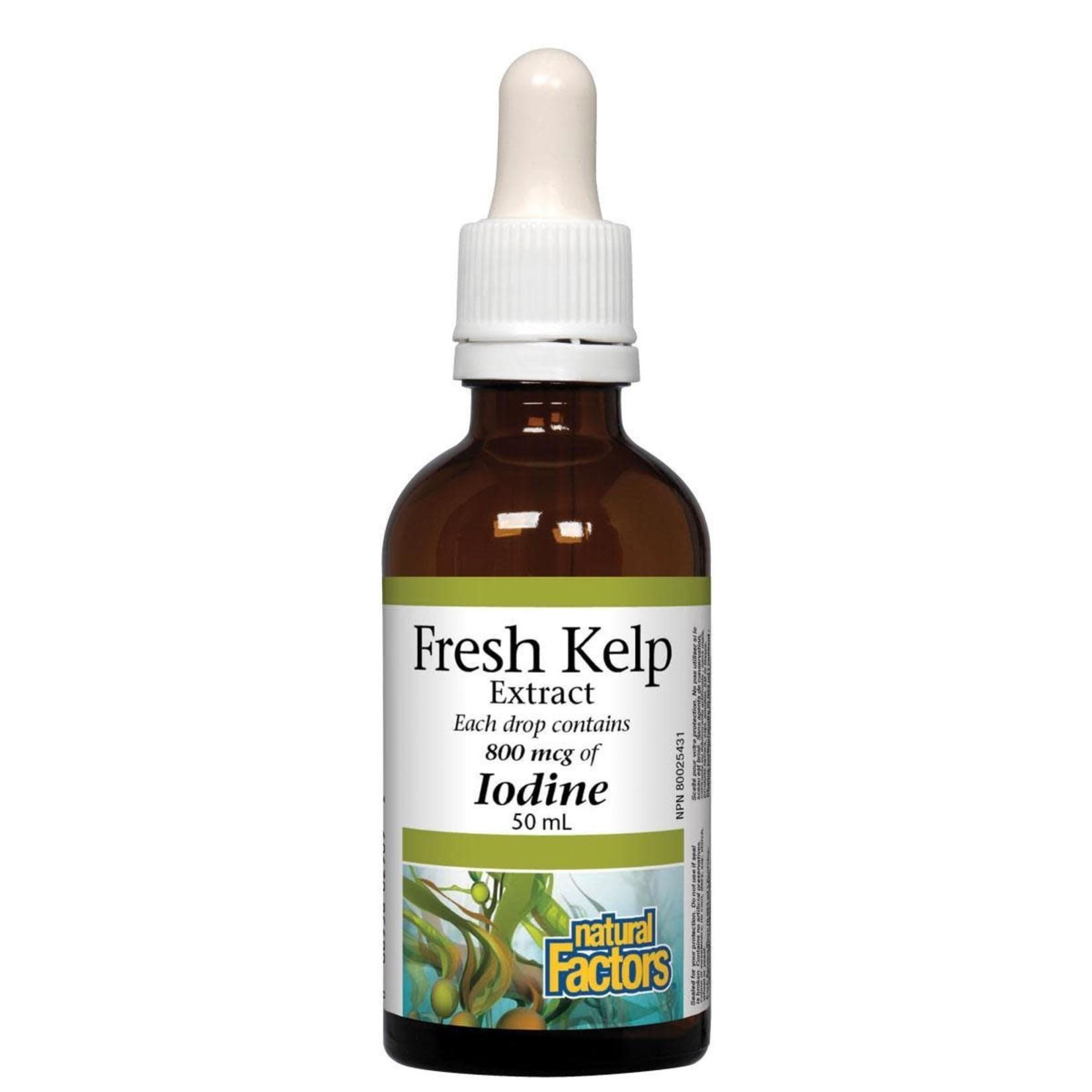 Natural Factors Natural Factors Fresh Kelp Extract 50ml