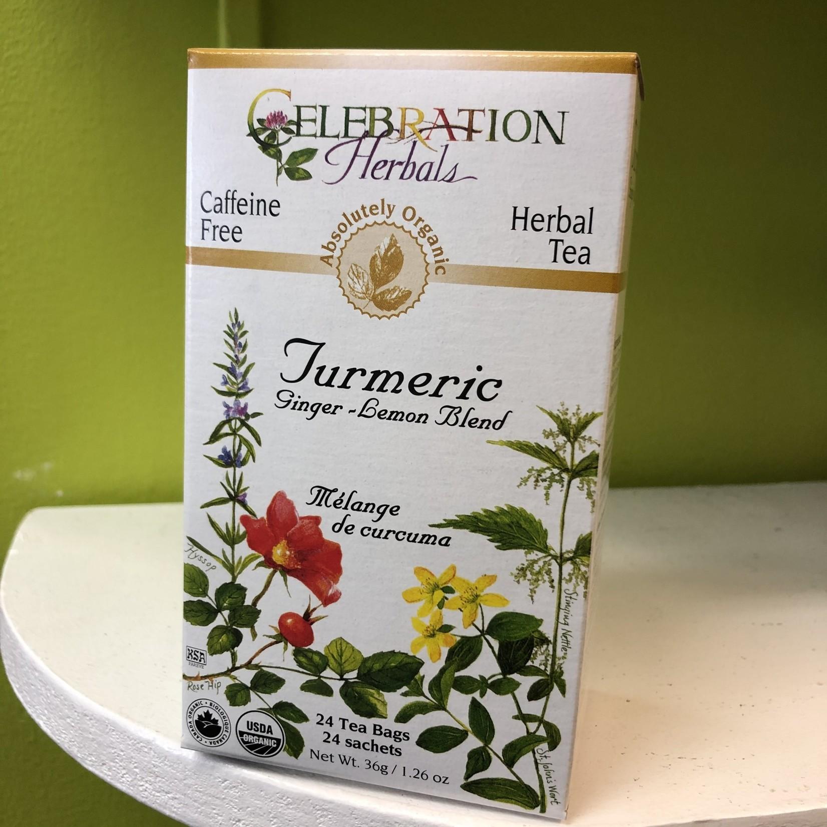 Celebration Herbals Celebration Herbals Turmeric Tea 24 Tea Bags