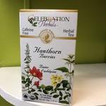 Celebration Herbals Celebration Herbals Hawthorn Berries Tea 24 Tea Bags