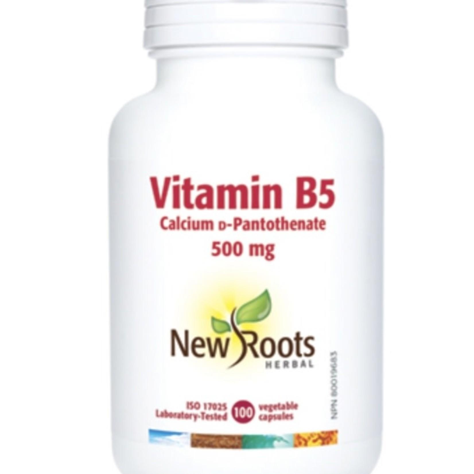 New Roots New Roots Vitamin B5 500mg 100 caps
