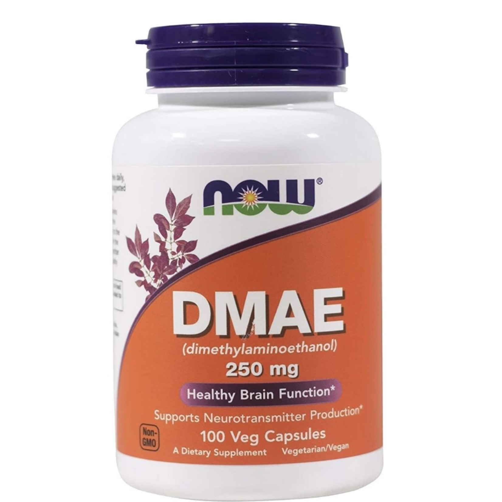 Now Now DMAE 250mg 100 caps