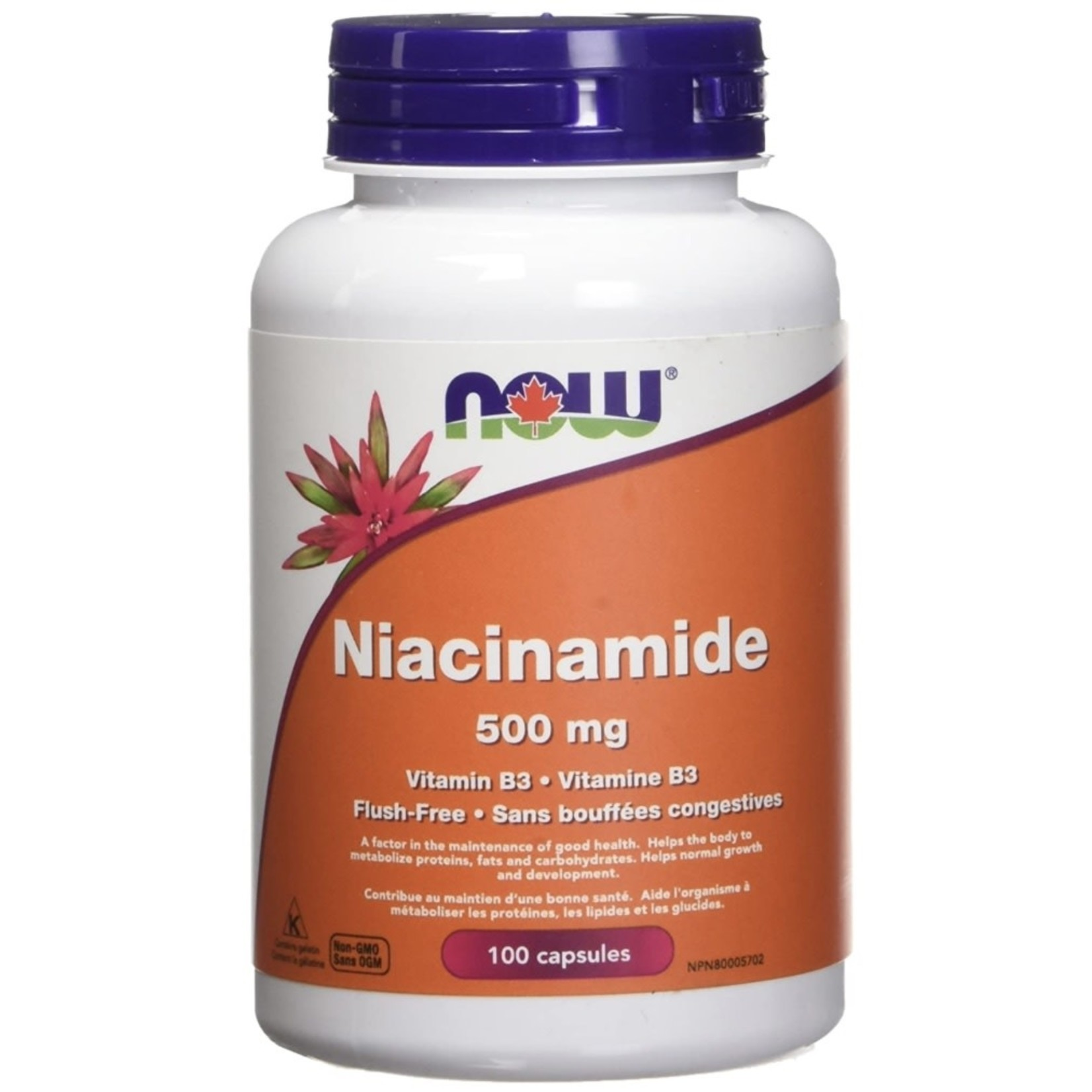 Now Now Niacinamide 500mg 100 caps