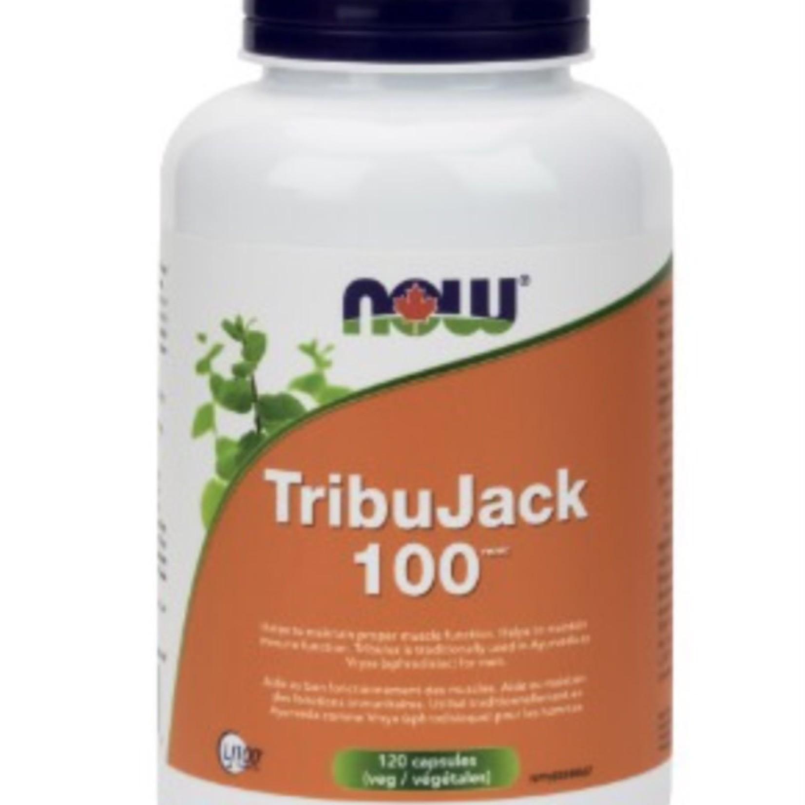 Now Now Tribujack 100 120 caps