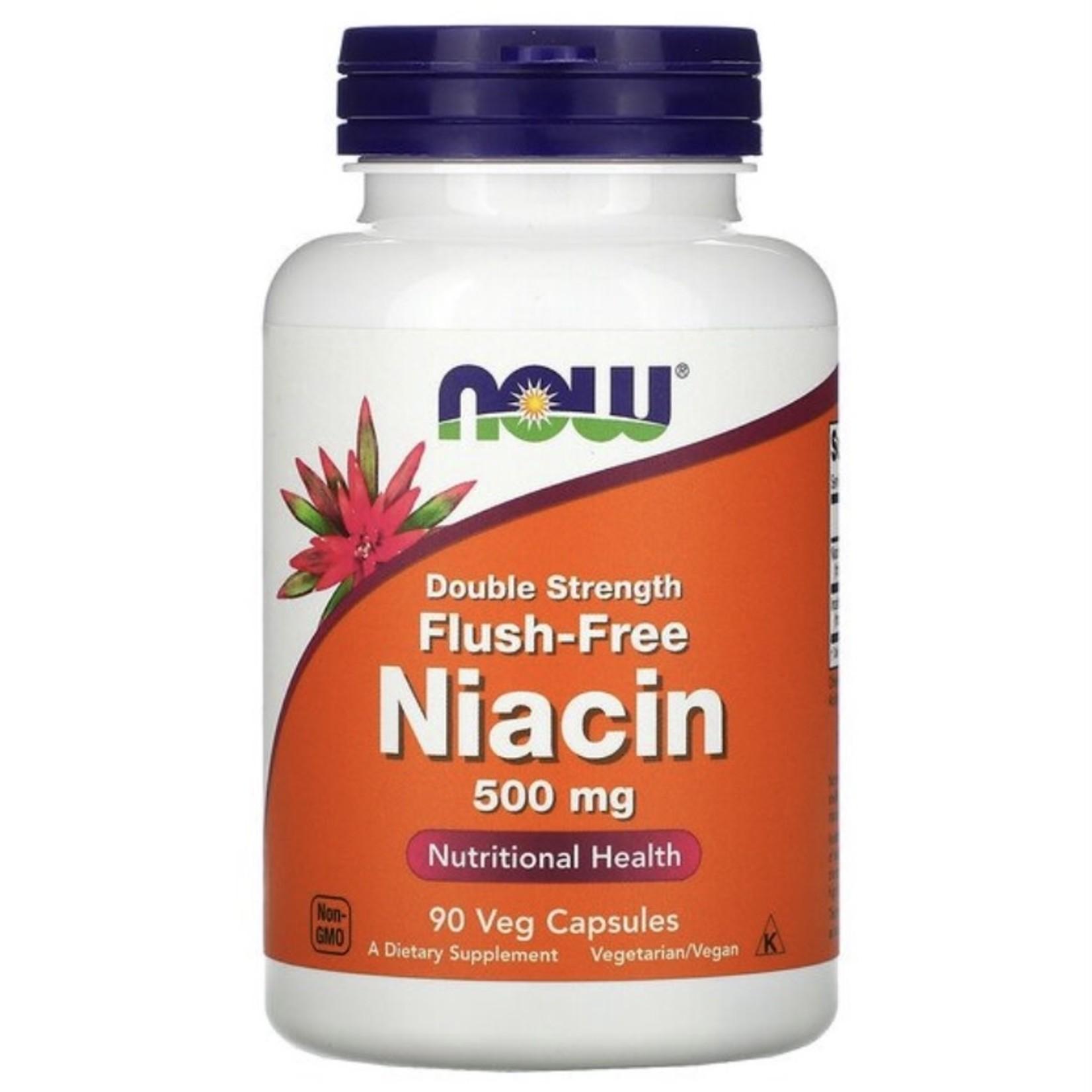 Now Now Flush-Free Niacin 500mg 90 caps