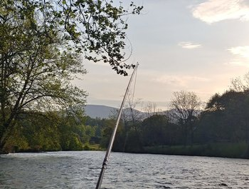 Fishing is incredible, weather beautiful and our guides are ready to help get you on the water