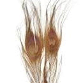 Natures Spirit NATURES SPIRIT BLEACHED & DYED PEACOCK STICKS - 4 sticks GRAY OLIVE 7