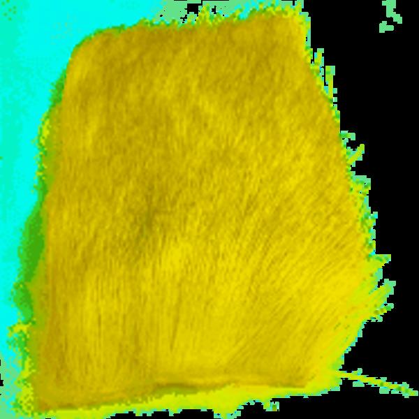 Natures Spirit NATURES SPIRIT -  SELECT COW ELK 2 X 3 - Yellow