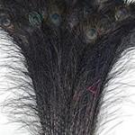 Natures Spirit NATURES SPIRIT -  BLEACHED AND DYED PEACOCK STICKS - Black 33