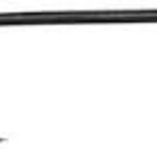 Daiichi Daiichi 1560 Hooks, sz 12, 25 pk