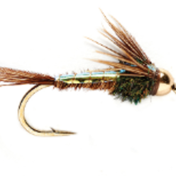 UMPQUA FlashBack BH American Pheasant Tail Size 18