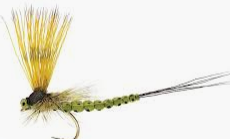 Fulling Mill Mohican Mayfly Olive Size 12