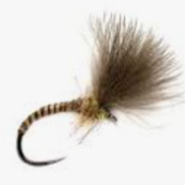 Fulling Mill Natural Quill Emerger Size 16