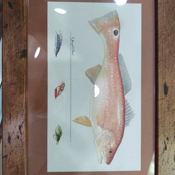 Wind River Gear Watercolor Wall Art - Redfish