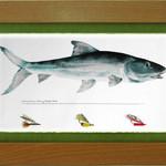 Wind River Gear Watercolor Wall Art -Bonefish