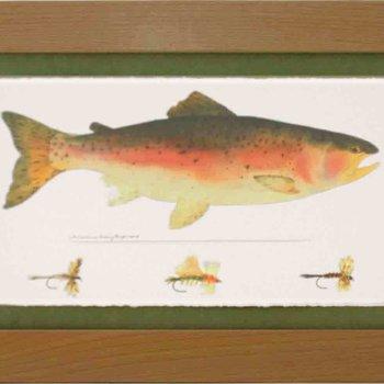 Wind River Gear Watercolor  Wall Art Brown Trout
