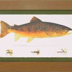 Wind River Gear Watercolor Wall Art -Brown Trout