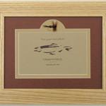 Wind River Gear Genuine Fly Frame - Stimulator