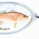 Wind River Gear Key Chain - Redfish