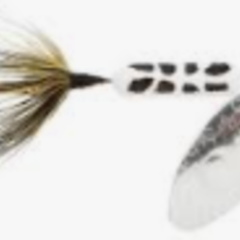 Wordens Wordens 206-WHCD Rooster Tail 1/16oz