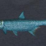 Fishpond Silver King  T-Shirt - Dusk