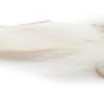Fullingmill LITTE RASCAL WHITE   8