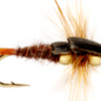 Fulling Mill BH Stonefly Brown S8