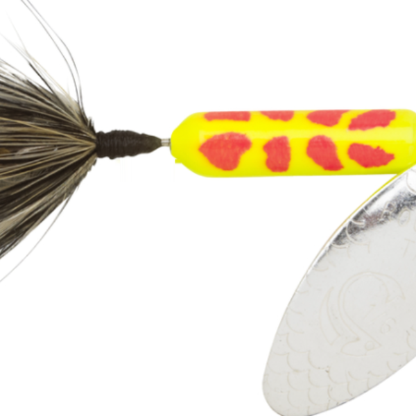 Wordens Rooster Tail 208-CLCD 1/8oz
