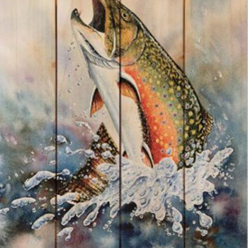 DaydreamHQ Bartholet's Brook Trout 14  X 20