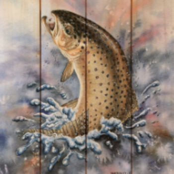 DaydreamHQ Bartholet's Brown Trout 11 X 15