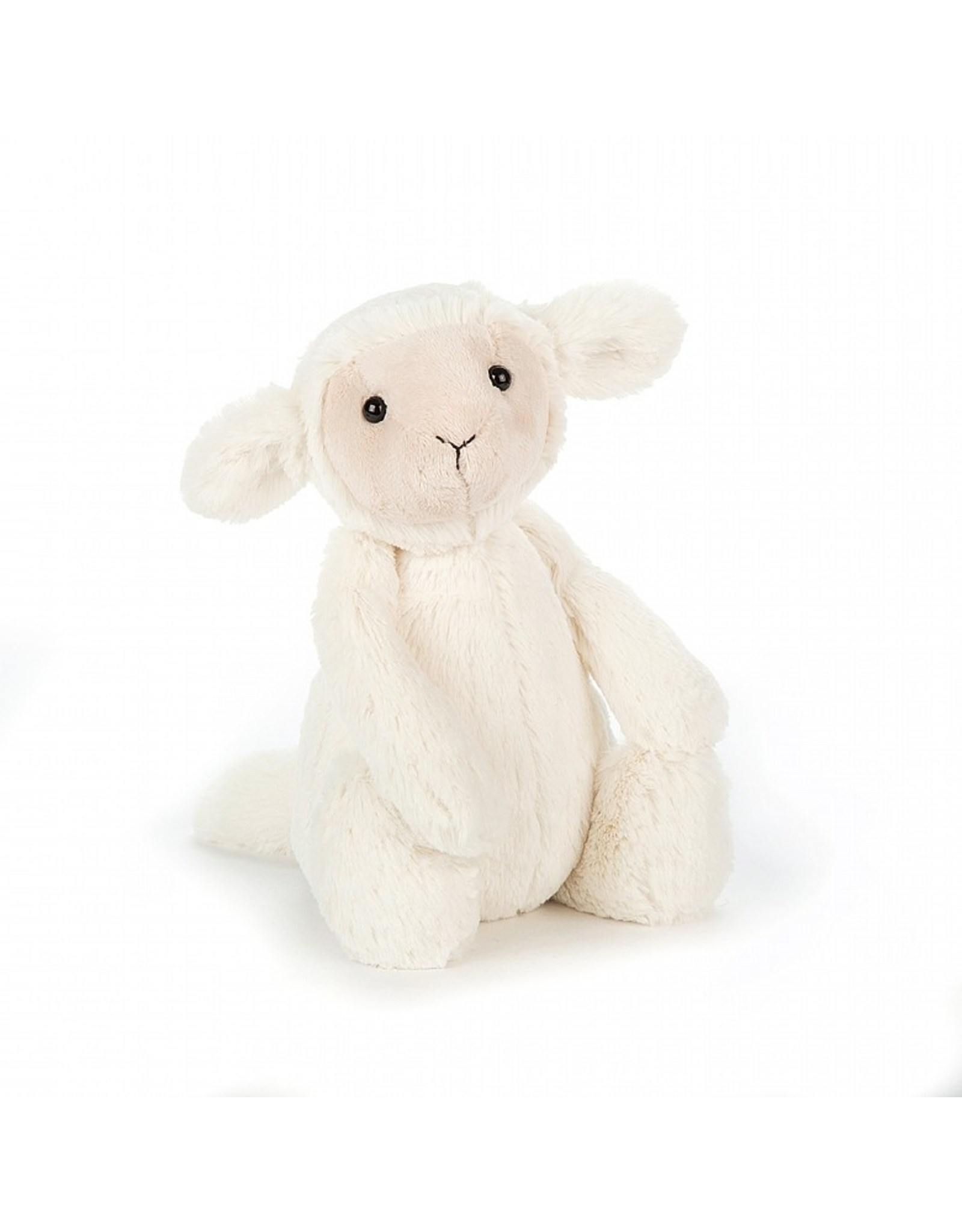 Bashful Lamb/Medium