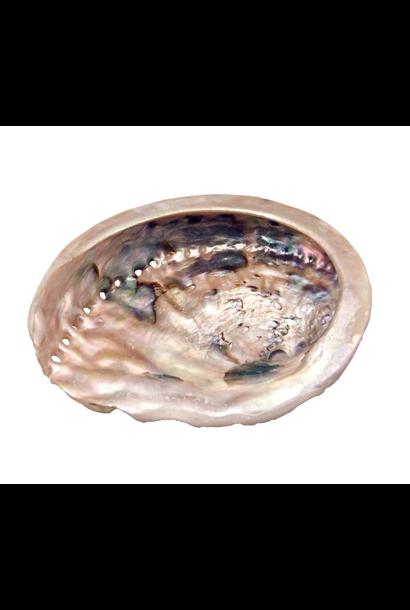"Smudge Bowl Abalone - Loose 5"""