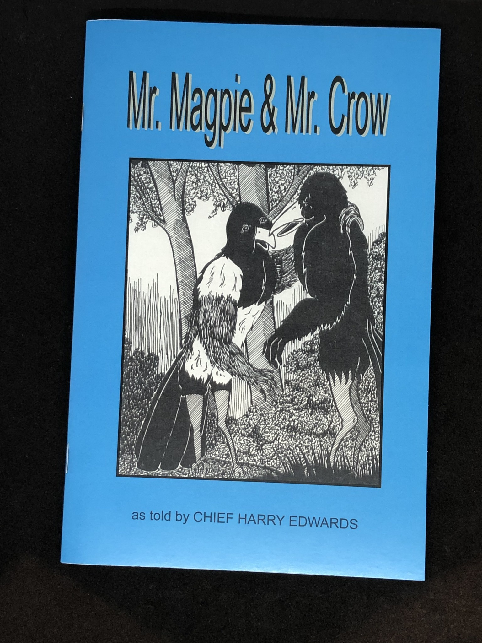 Book-Mr. Magpie & Mr. Crow-1