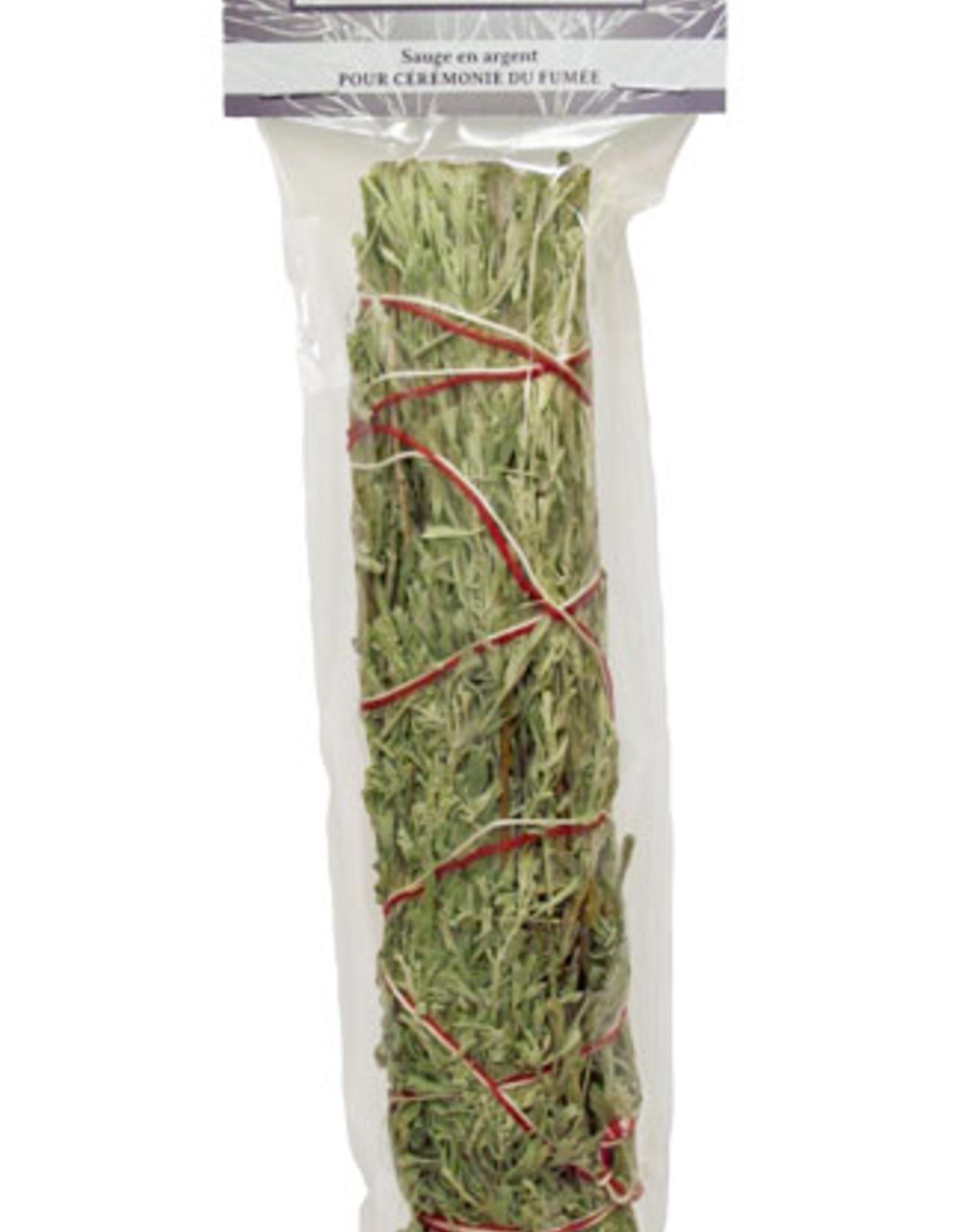 "Silver Sage  stick 3.5"""
