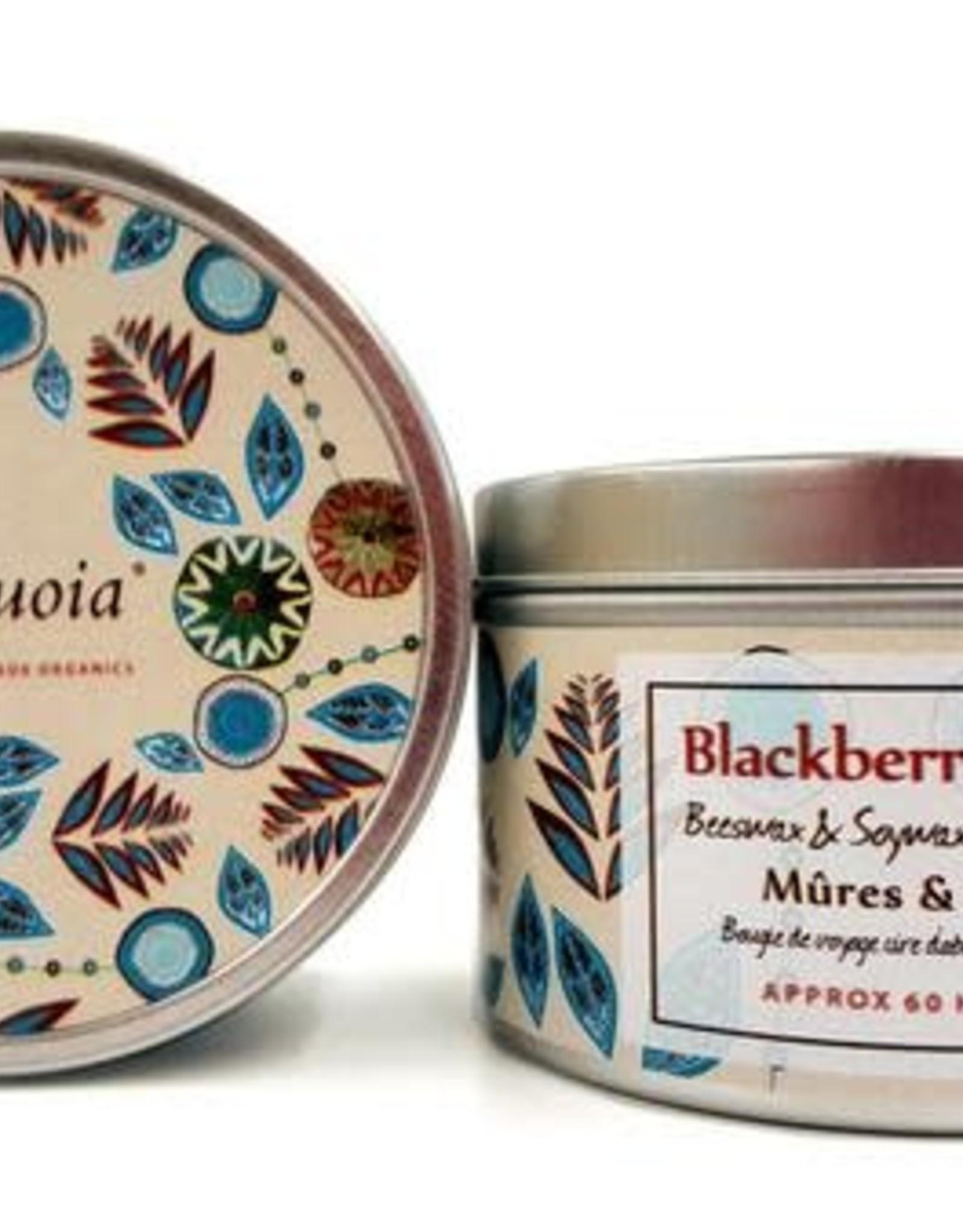Sequoia 30 hr Candle - Blackberry Sage
