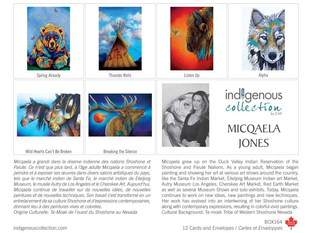 Boxed Art Cards - Indigenous Collection-7