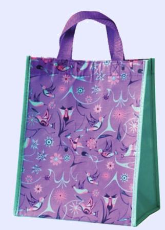 Eco bag Small- Hummingbirds by Nicole LaRock-2