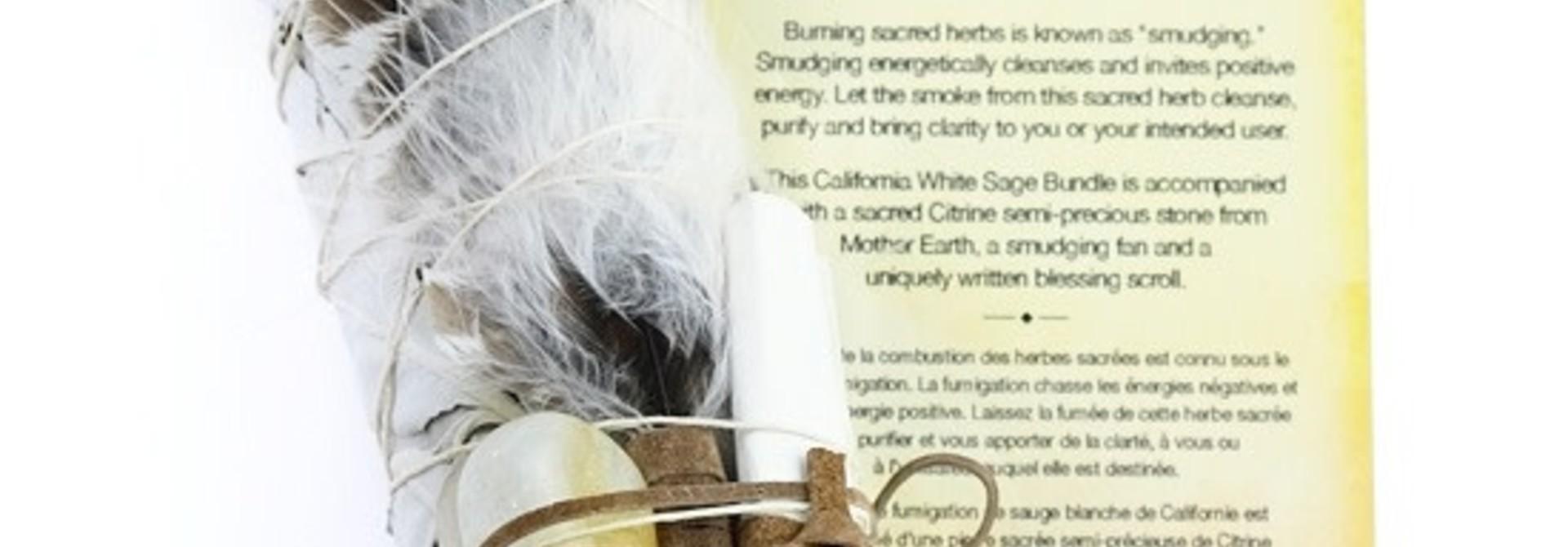 Botanical Blessing Smudge Kit - Citrene Stone