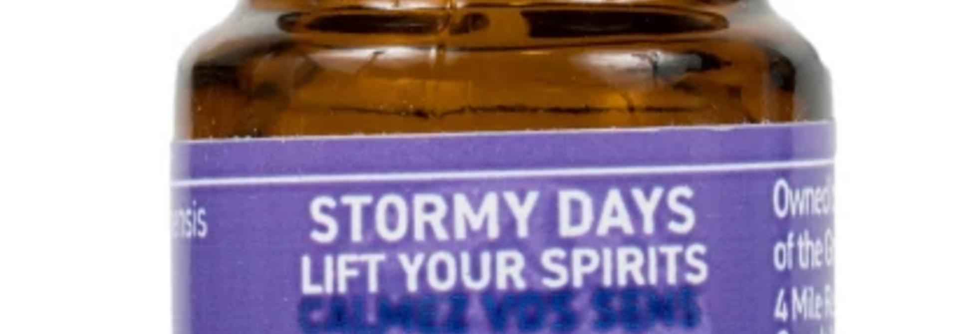 Great Bear Rainforest Essential Oil- Stormy Days