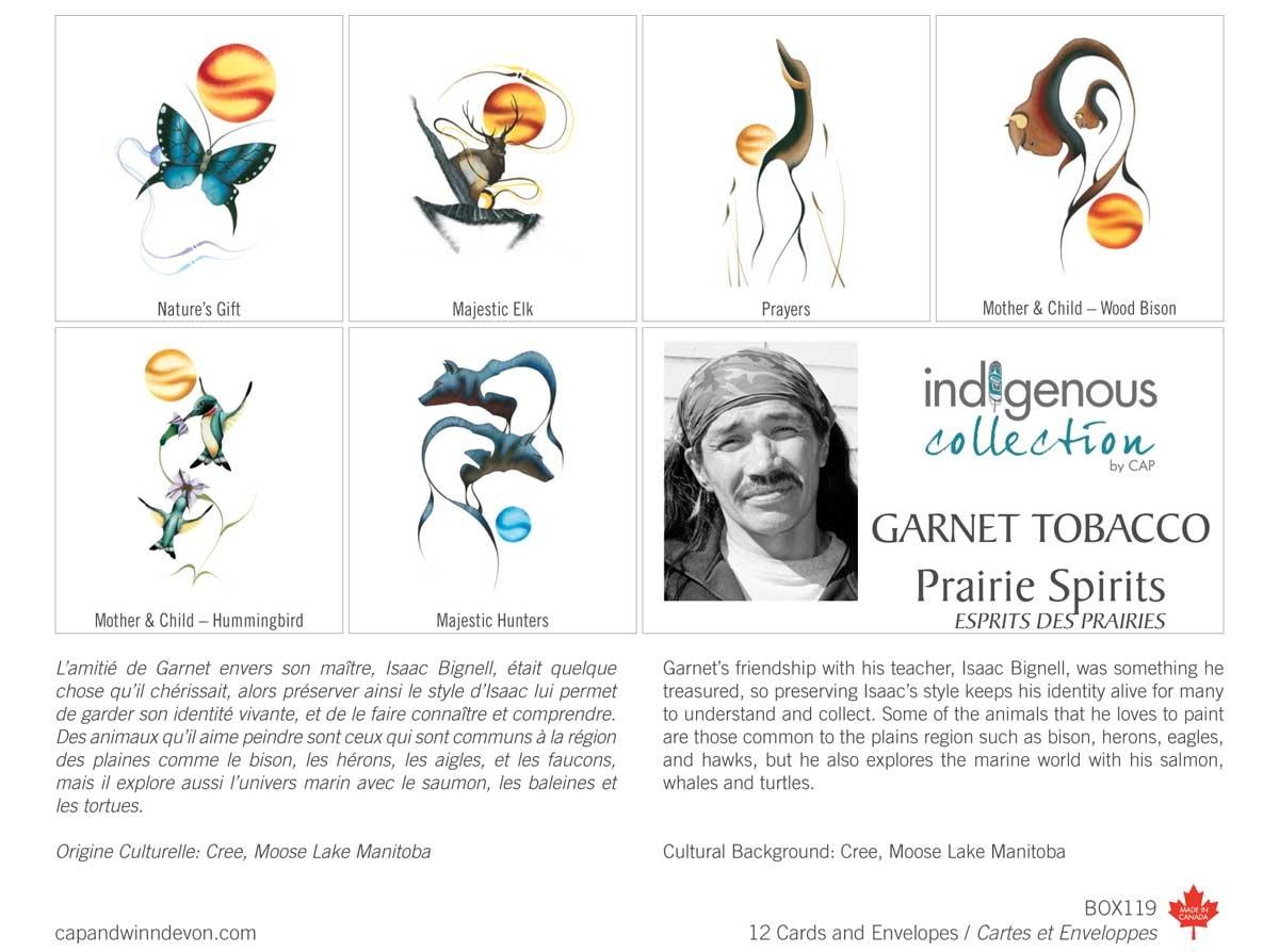 Boxed Cards - Prairie Spirits by Garnet Tabacco-1