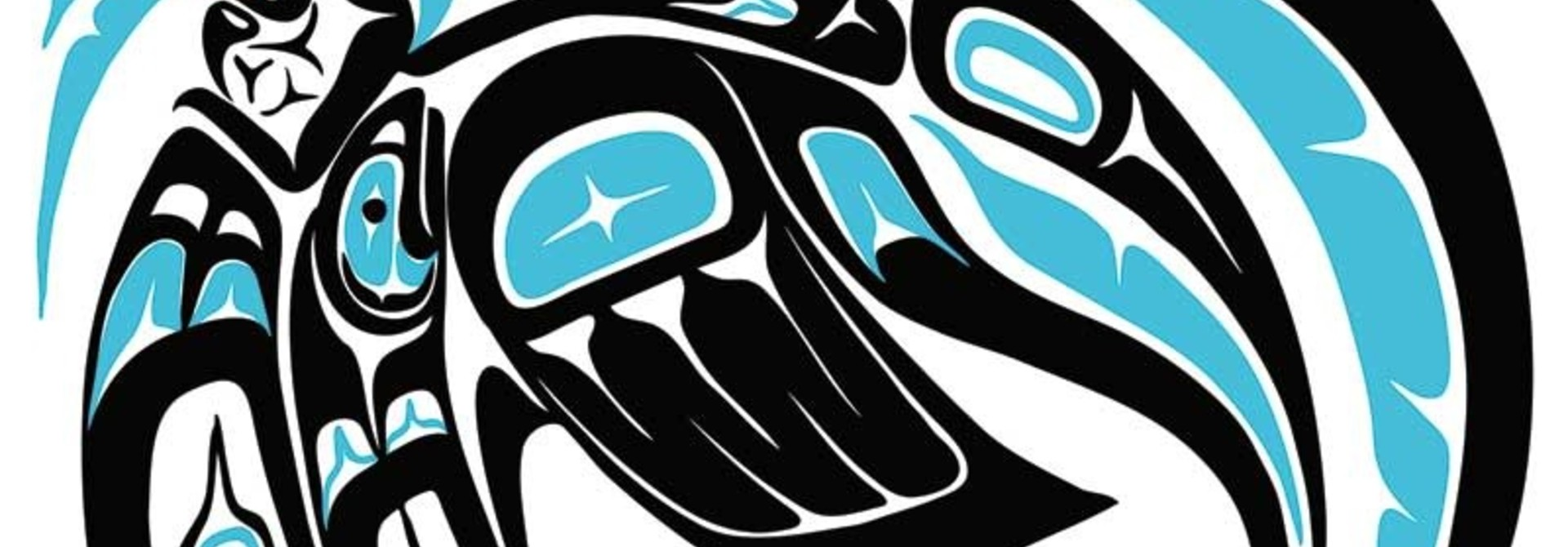 Killer whale-Jonathan Erickson