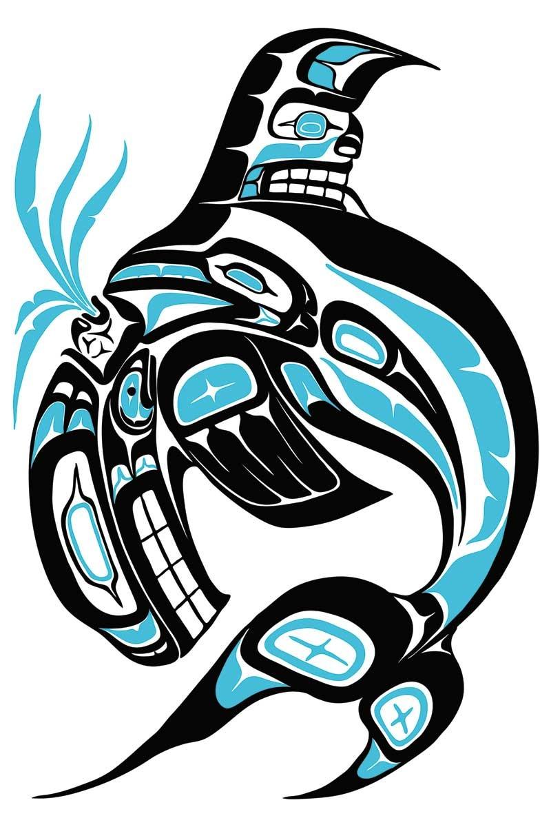 Killer whale-Jonathan Erickson-1