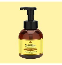 Foaming Hand Soap, Coconut & Honey, 12 oz