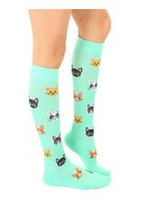 Sock, Cat Compression