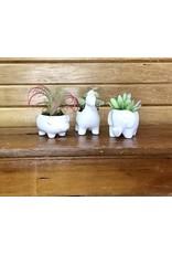 Animal Porcelain Planter Succulents