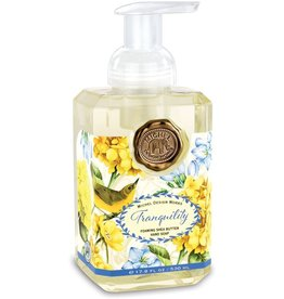 Michel Design Foaming Hand Soap, Tranquility, 17.8oz