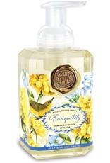 Michel Design Foaming Hand Soap, Tranquility, 4.7oz