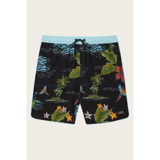 O'Neill M's Exchange Volley Shorts