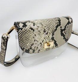 Varsity Clear Crossbody Bag
