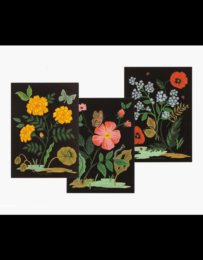 Botanical Social Stationary Set