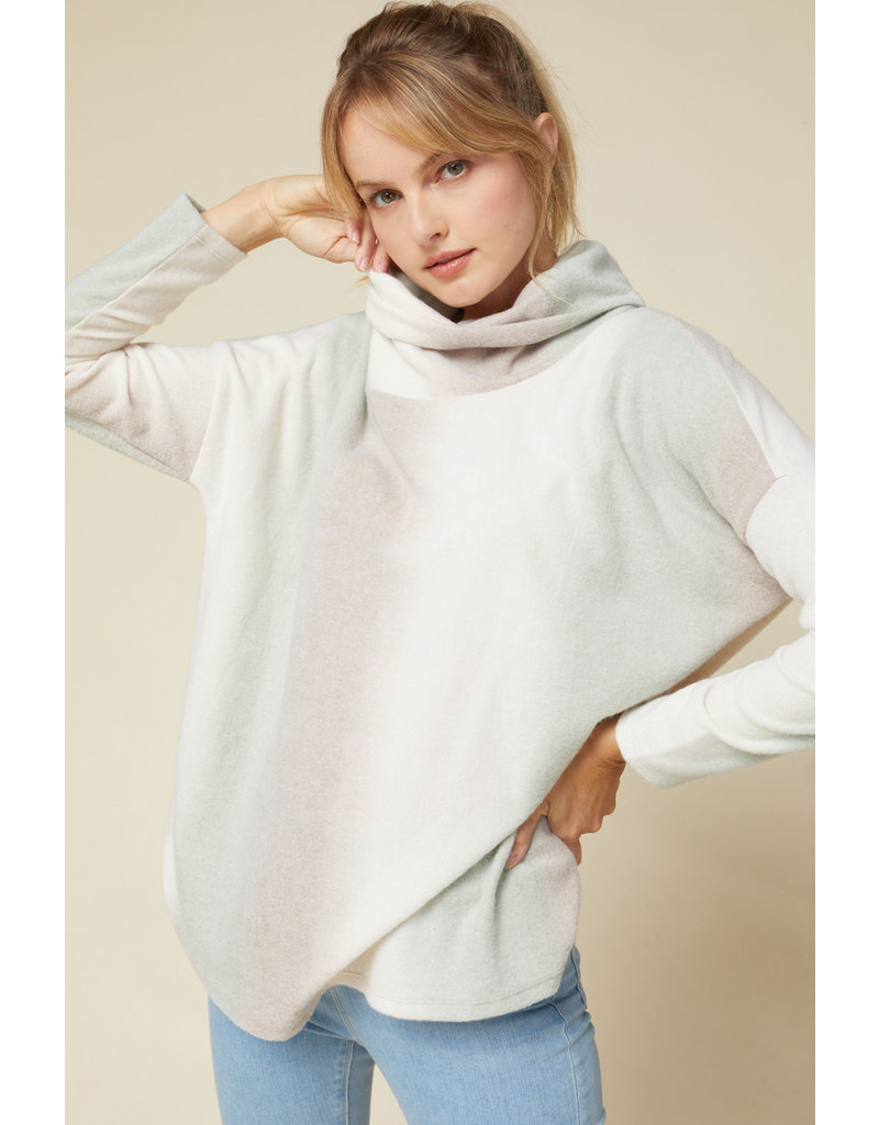 Entro USA Turtleneck Pullover Sweater